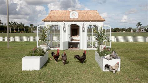 Backyard Chickens Book Backyard Chickens The World S Most Expensive Coop Hgtv