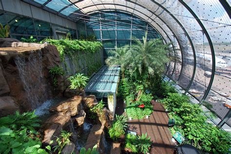 House Plans With Indoor Swimming Pool by 5 Things Hk Airport Can Learn From Singapore S Changi