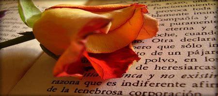 imagenes de flores marchitas flores marchitas el poeta de la esquina