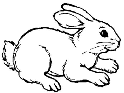 imagenes de animales mamiferos para dibujar imagenes de animales domesticos para colorear