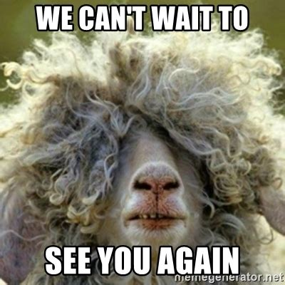 Can T Wait To See You Again Meme we can t wait to see you again stoner sheep meme generator