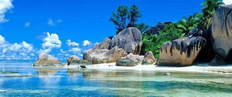 papel de parede  px de praia natureza