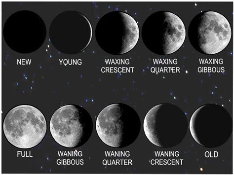 moon phase moon phases in order new calendar template site