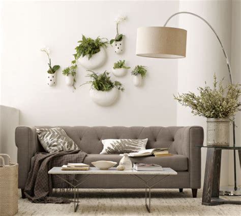 plants for living room plants in the living room www garden design me