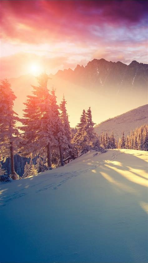 iphone 6 wallpaper pinterest winter winter sun iphone wallpapers mobile9 iphone 6