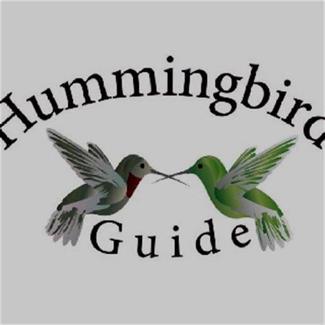 homemade hummingbird food formula is 1 part sugar to 4