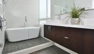 Baths And Showers For Small Bathrooms Clever Design Ideas The Bath Tub In The Shower Drench The Bathroom Of Your Dreams