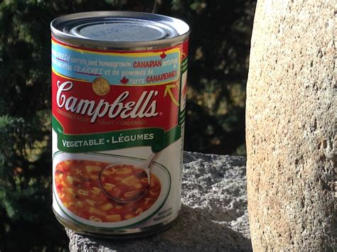Rempel Sw cbell s soup rempel visions new york