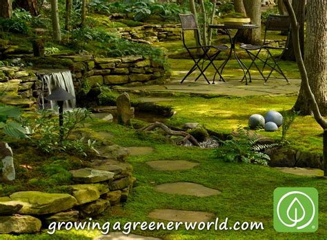 Moss And Gardens by Episode 319 Moss Gardens Growing A Greener World 174
