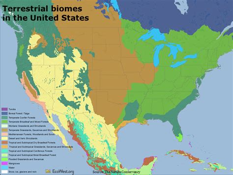 america map biome biomes map usa images