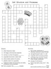 Printable cells crossword puzzle worksheet cytology biology science