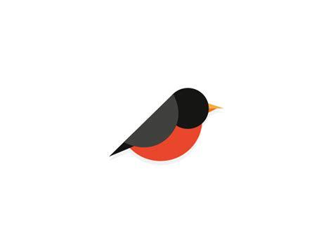 bird by noe araujo dribbble