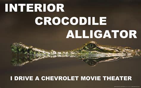 Alligator Interior by Interior Crocodile Alligator By Youoweadam On Deviantart