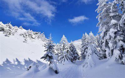 paesaggio invernale sfondi desktop wallpapers e pelautscom pictures scarica sfondi paesaggio invernale alinci montagne