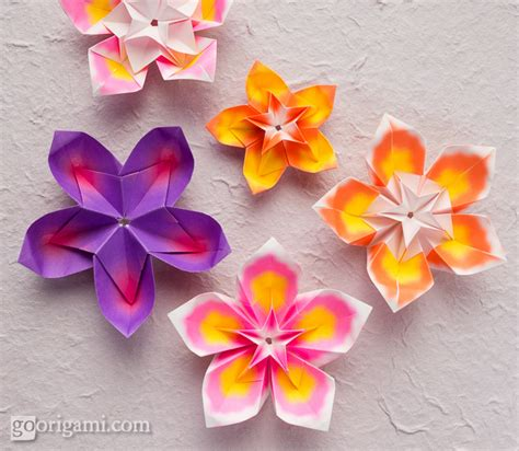 Origami Of A Flower - image gallery origami flowers