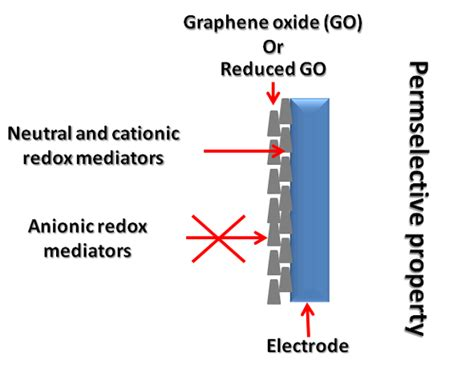 supercapacitors with graphene oxide separators and reduced graphite oxide electrodes supercapacitors with graphene oxide separators and reduced graphite oxide electrodes 28 images