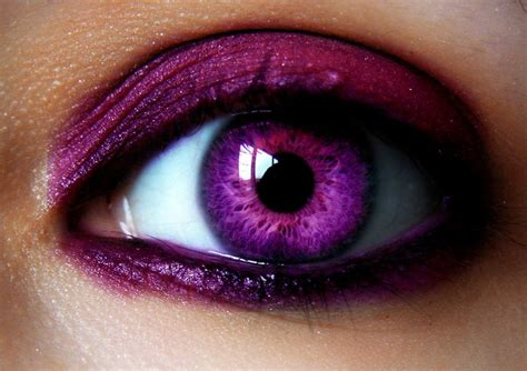purple eye color 34 best images about on color contacts black gold and glow