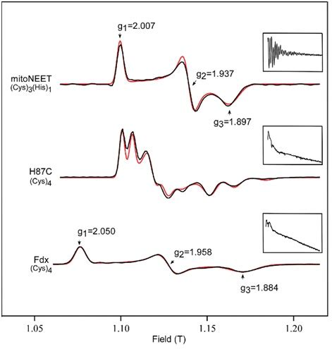 spectroscopy tutorial questions experimental physics which g factor in an epr spectra is