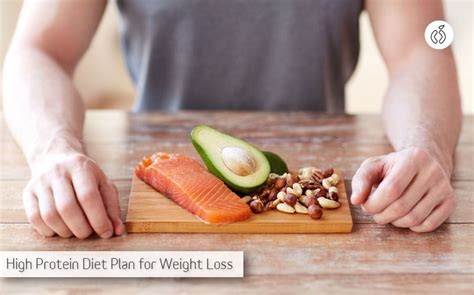 best diet what is the best high protein diet plan for weight loss