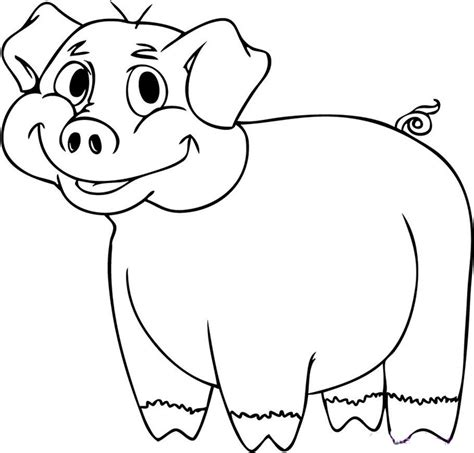 pig coloring page template pig template animal templates free premium templates