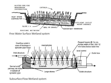 design criteria for constructed wetlands wetlands for water quality management the science and