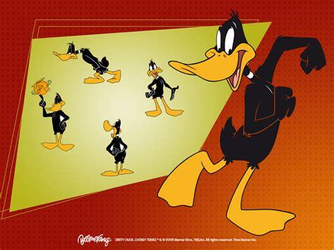 daffy duck wallpaper looney tunes wallpaper 5226651 fanpop