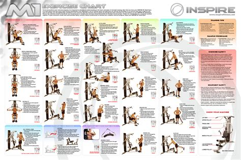 exercise chart new calendar template site