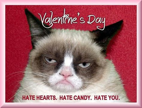 valentines grumpy cat a grumpy for you meme a holic meeting here 24