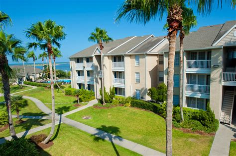 tamucc housing welcome to islander housing texas a m university corpus christi