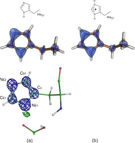 Histidine Protonation by Alternative Protonation States Of The Imidazole Ring As