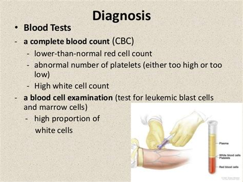 low white blood cell count in dogs low white blood cell count adults coloring erogonbuilding