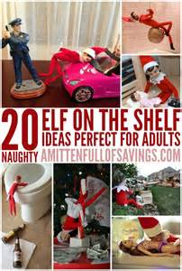 20 on the shelf ideas for adults a worthey read