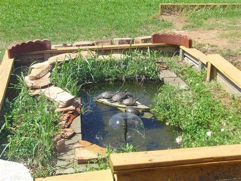 backyard turtle pond great idea for enclosing the turtle pond garden pinterest