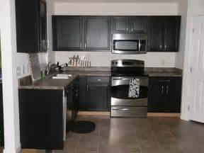 Painted Black Kitchen Cabinets Kitchen Black Painted Cabinets For Kitchen Design White And Black Kitchen Cabinets Painted