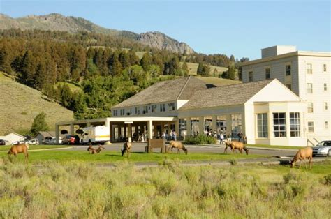 Mammoth Springs Hotel And Cabins Yellowstone National Park Wy by Mammoth Springs Hotel Cabins Updated 2017 Prices