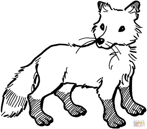 Coloring Page Fox by Fox Coloring Pages To And Print For Free