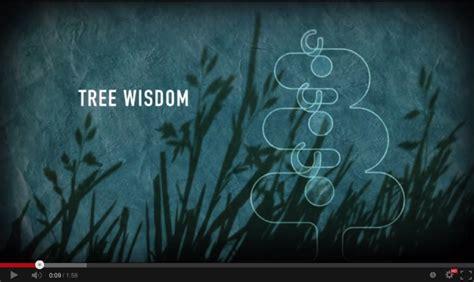 videoscribe anywhere tutorial the secret of tree wisdom videoscribe blog