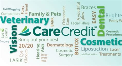 care credit for dogs is a pet healthcare credit card really worth it petful