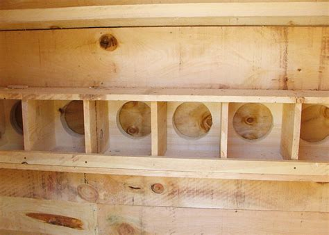 How To Light Firewood Small Chicken Coop For Sale Prefab Chicken Coop