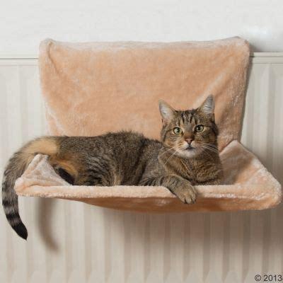 amache per gatti amaca da calorifero yumi zooplus