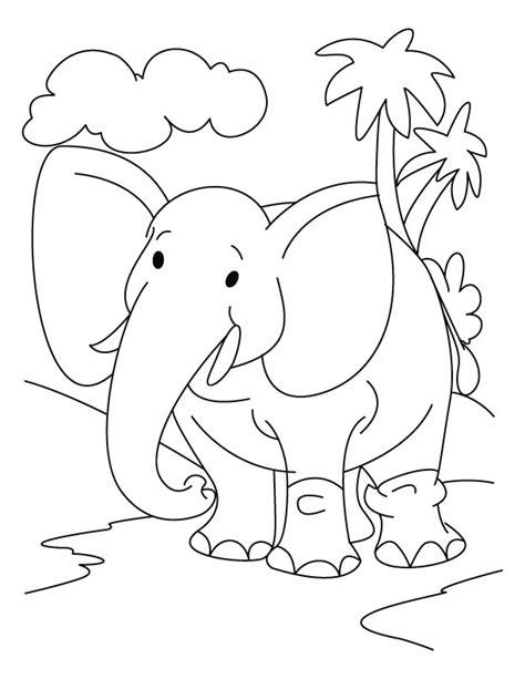 preschool coloring pages jungle animals preschool jungle coloring pages freecoloring4u