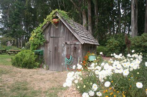 botanical gardens fort bragg ca festival of lights 17 best images about elk snout on coast
