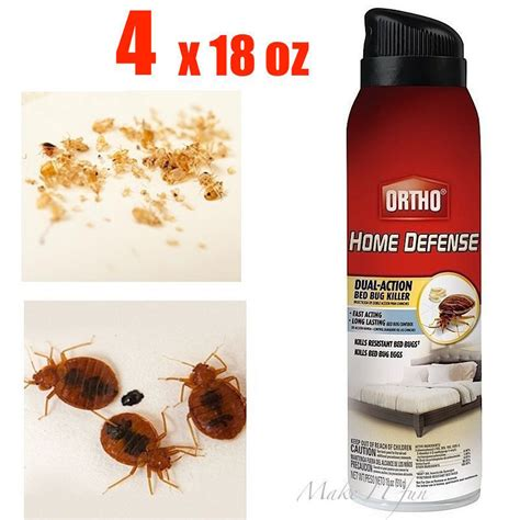 how to get rid of bed bugs spray kill bug eggs