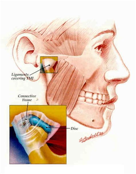what are the causes and symptoms of jaw pain ehow jaw joint clicking tmj symptoms