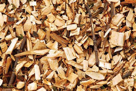 Paper From Woodchips - nationstates view topic wood chips for sale