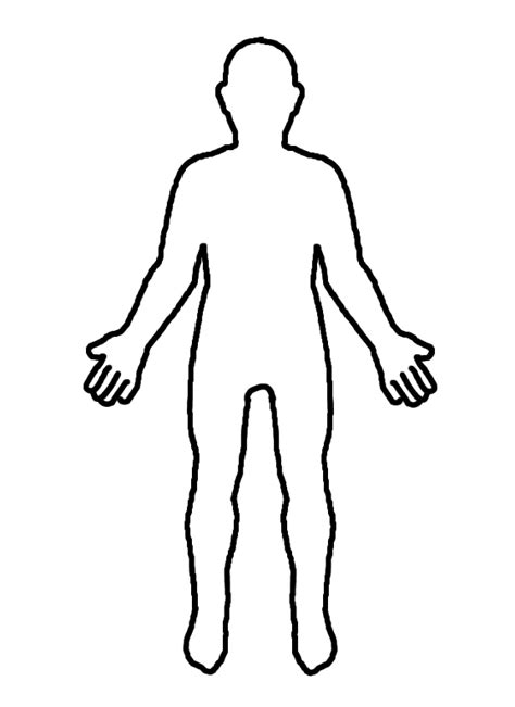 a diagram of the human body blank print out a free