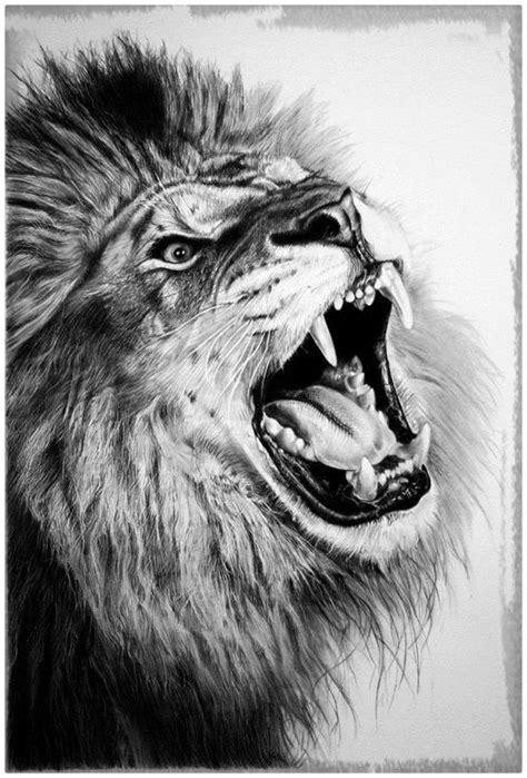imagenes hechas a lapiz de animales inolvidables imagenes de dibujos de lapiz dibujos de