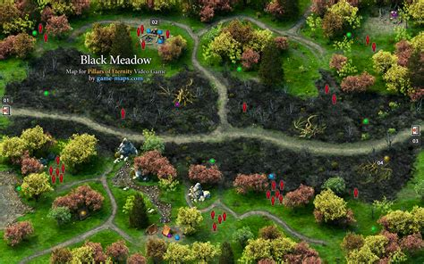 meadows game black meadow pillars of eternity walkthrough with maps