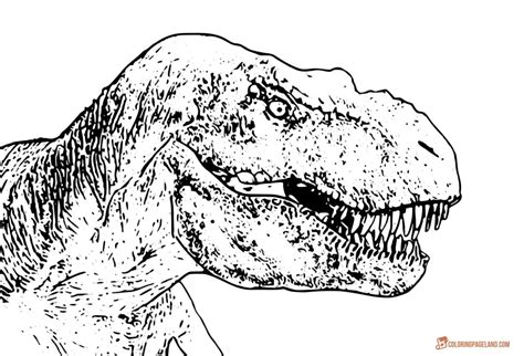 rex coloring pages free t rex dinosaur coloring pages t rex coloring pages