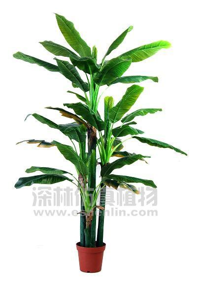 cheap indoor plants cheap indoor plants two trunks big leaf cheap artificial